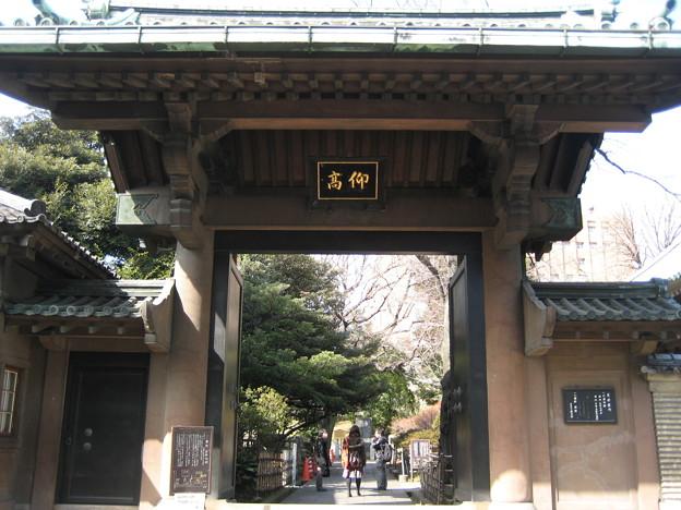 湯島聖堂(文京区)迎高門