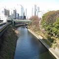 Photos: 聖橋より西(千代田区文京区境界)前方 お茶の水橋