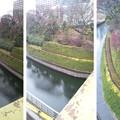 Photos: 11.02.14.聖橋西(北岸。文京区)