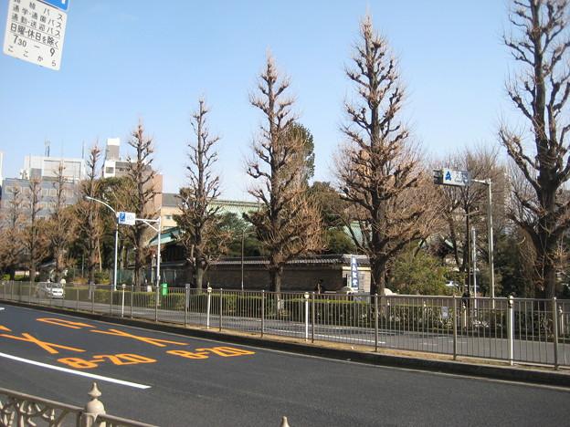 聖橋北詰西側(文京区)湯島聖堂
