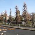 Photos: 聖橋北詰西側(文京区)湯島聖堂
