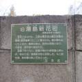 Photos: 霊雲寺(湯島2丁目)旧湯島新花町