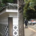Photos: 11.02.21.加賀殿上屋敷跡 ・前田侯爵邸(本郷7丁目)東京大学