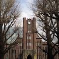 東京大学大講堂(安田講堂。文京区)