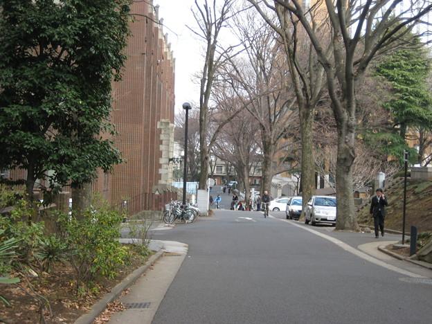 加賀殿上屋敷・前田侯爵邸跡(本郷7丁目)東京大学構内