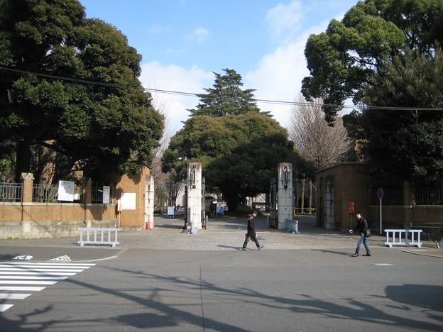 森川金右衛門上屋敷跡(弥生1丁目)東大弥生キャンパス