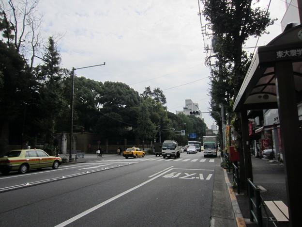 11.11.10.本郷追分 日光御成道(岩槻街道。文京区)南向き