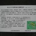 Photos: 弥生二丁目遺跡 ・浅野侯爵邸跡(東大浅野地区。文京区)