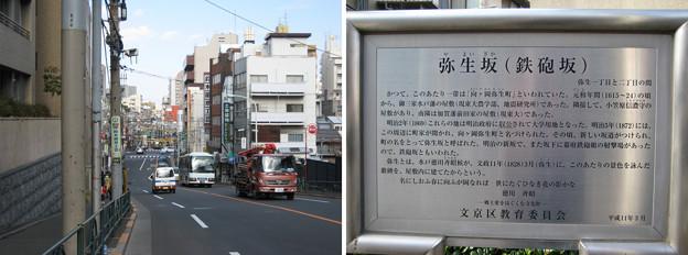 弥生坂(鉄砲坂。文京区弥生)