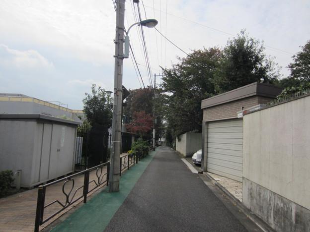 Photos: 薮下通り(千駄木2丁目)南向き