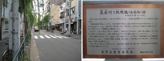 10.11.11.枇杷橋(合染橋。藍染川)跡(文京区)