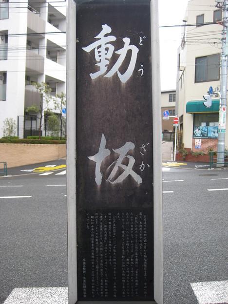 11.03.22.動坂(千駄木4丁目・駒込4丁目)