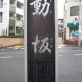 Photos: 11.03.22.動坂(千駄木4丁目・駒込4丁目)