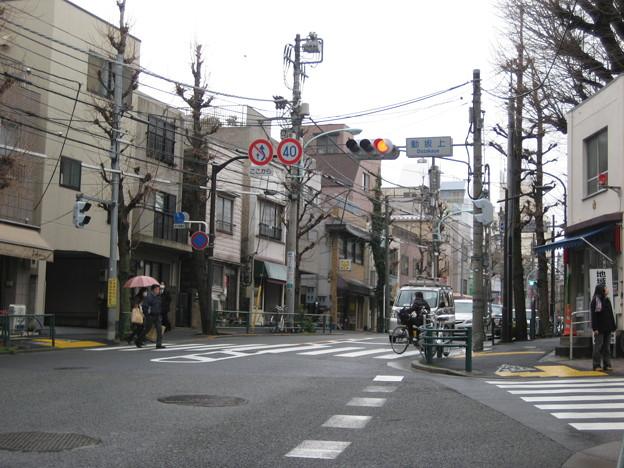 動坂上交差点より南(千駄木5丁目・駒込3丁目)