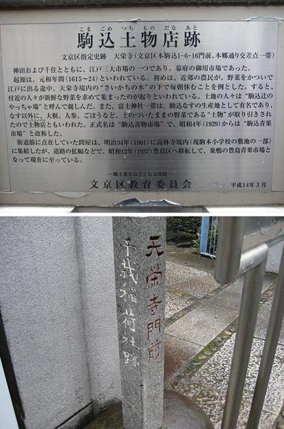 11.03.22.天栄寺(本駒込1丁目)