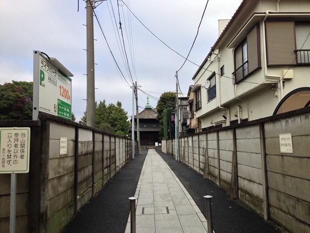 洞泉寺参道より吉祥寺経蔵(本駒込3丁目)