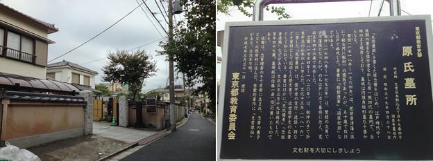 Photos: 13.10.21.洞泉寺(本駒込3丁目)