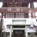 Photos: 11.03.22.吉祥寺(本駒込3丁目)茗荷稲荷