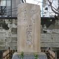 吉祥寺(本駒込3丁目)お七・吉三郎 比翼塚