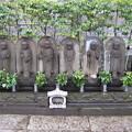 Photos: 吉祥寺(本駒込3丁目)六地蔵