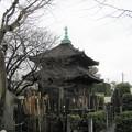 Photos: 吉祥寺(本駒込3丁目)経蔵