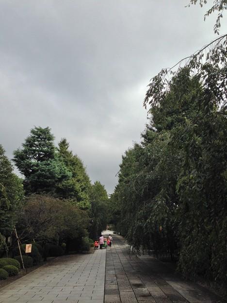 吉祥寺(本駒込3丁目)参道