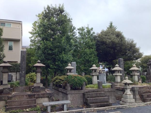 吉祥寺(本駒込3丁目)七日市藩前田家子孫墓所