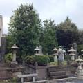 Photos: 吉祥寺(本駒込3丁目)七日市藩前田家子孫墓所