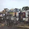 Photos: 吉祥寺(本駒込3丁目)七日市藩前田家墓所