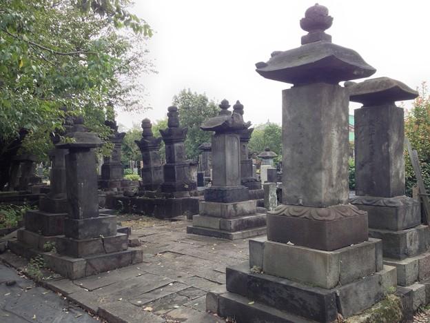 吉祥寺(本駒込3丁目)壬生藩鳥居家墓所