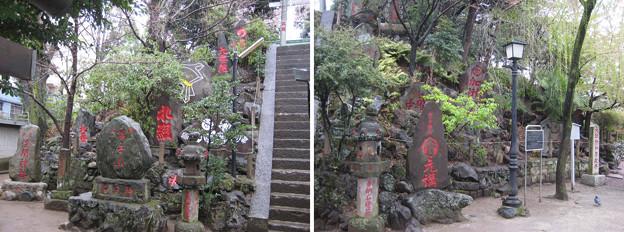 11.03.22.駒込富士神社(本駒込5丁目)