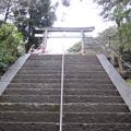 駒込富士神社(本駒込5丁目)男坂