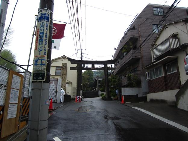 白山神社(白山5丁目)一の鳥居