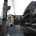 Photos: 白山神社(白山5丁目)一の鳥居