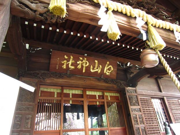 白山神社(白山5丁目)拝殿