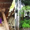 12.04.23.白山神社(白山5丁目)摂末社