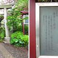 12.04.23.白山神社(白山5丁目)八幡社