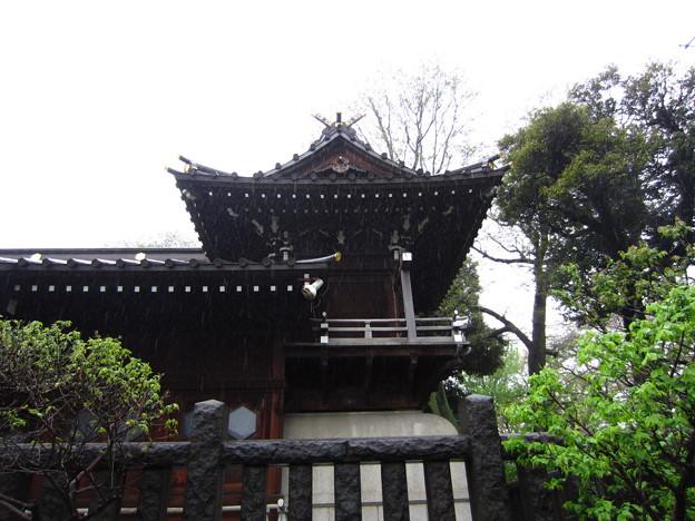 白山神社(白山5丁目)本殿