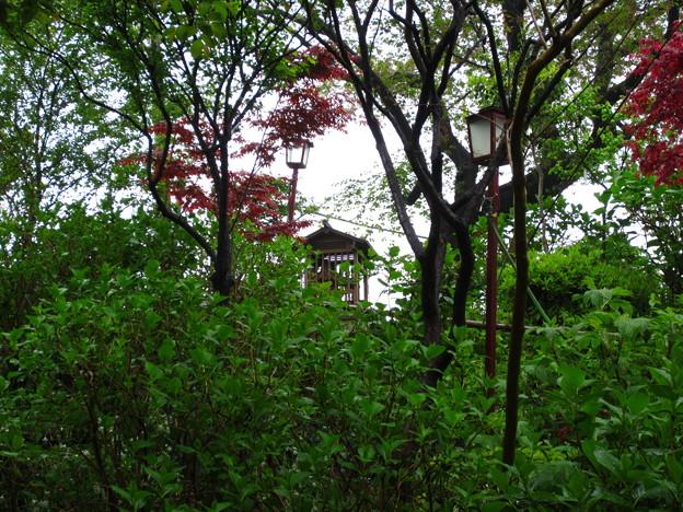 白山神社(白山5丁目)浅間社