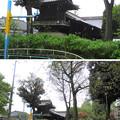 Photos: 12.04.23.白山公園より(白山5丁目)白山神社本殿