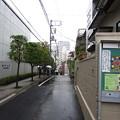 Photos: 東洋大白山キャンパス南面 ・白山権現旧社地北面(白山5丁目)