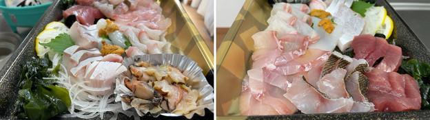 仙崎海産物2 ※ある意味3度目