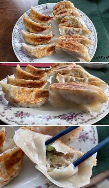山形 米の娘ぶた餃子2