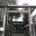 11.03.07.櫻木神社(本郷4丁目)