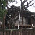 櫻木神社(本郷4丁目)