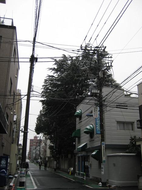 11.03.07.文京区本郷2-30