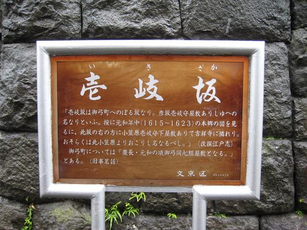 壱岐坂(本郷1丁目)