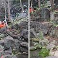 水戸殿上屋敷跡(文京区小石川)小石川後楽園 音羽の滝