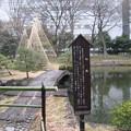 水戸殿上屋敷跡(文京区小石川)小石川後楽園 内庭