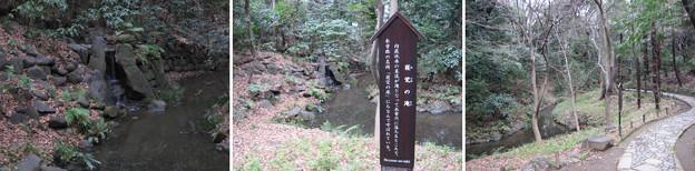 水戸殿上屋敷跡(文京区小石川)小石川後楽園 寝覚の滝